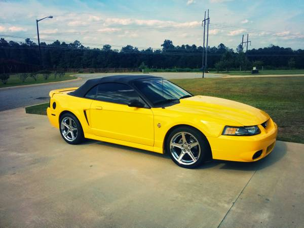 Compare MetLife Insurance Policy Quote For 1999 FORD MUSTANG COBRA SVT CONVERTIBLE $66.26 Per Month