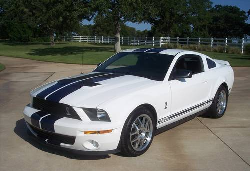 2007 Ford Shelby GT500 Coupe Insurance $175 Per Month
